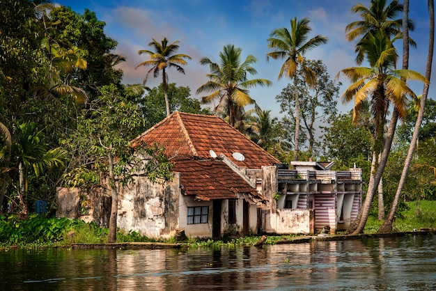 House in the jungle of kerala