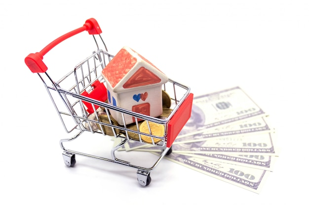 House model in mini shopping cart with stack of coins money on white