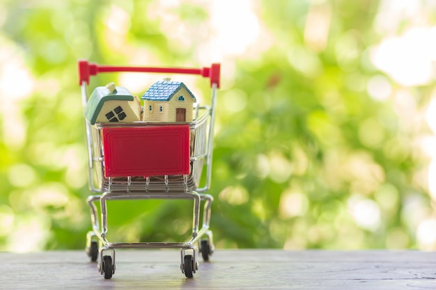House model in shopping cart