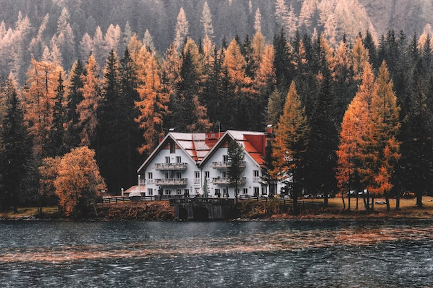 House near body of water and forest