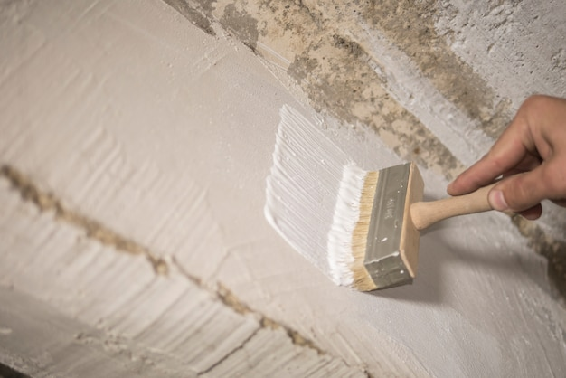 House painter paints the wall with white paint