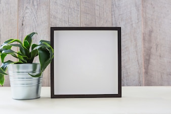 House plant in silver container with picture frame on white desk