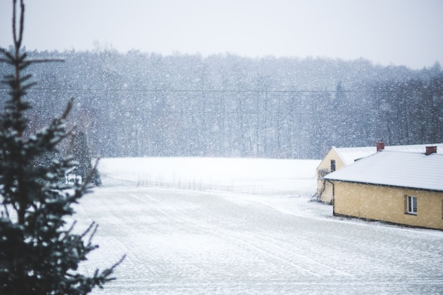 House and snowy field