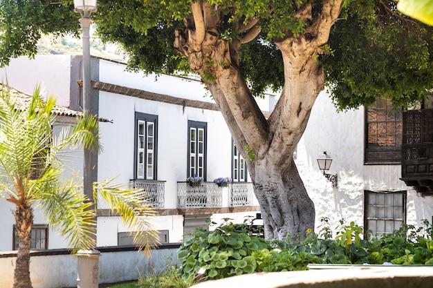 테네리페 섬의 icod de los vinos 구시가지 거리에 창문이 있는 집. 스페인, 카나리아 제도.