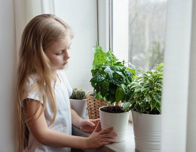 Houseplant care, little girl caring for houseplants