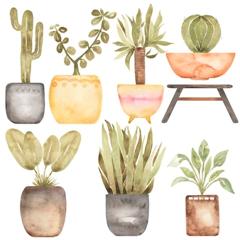 Houseplants 클립 아트, 수채화 손으로 그린 집 정원 그림, 집 꽃 클립 아트 세트, 화분에 심은 꽃, 카드 만들기, 로고 디자인, 스크랩북