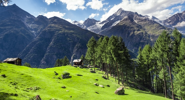 Houses in alpine meadow