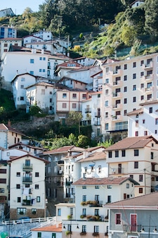 Houses in hillside of monte, basque country
