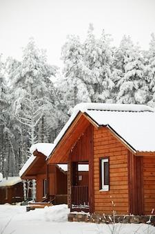 冬の森の家は周りに雪が降る