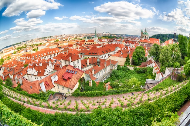 Houses with traditional red roofs and trees in prague mala strana district in the czech republic, fish-eye lens