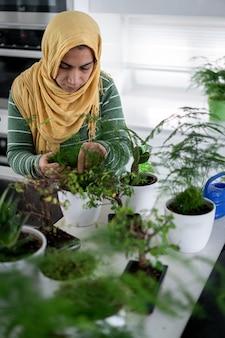台所の植物に水をまく家の主婦