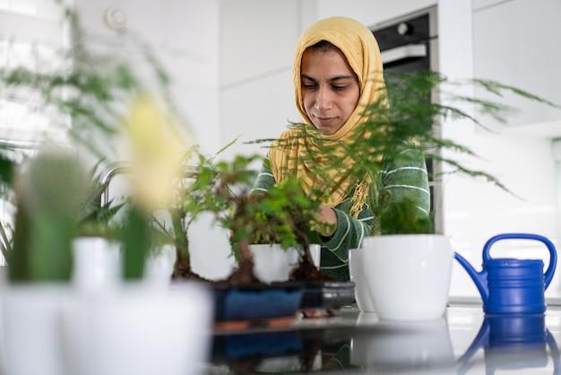 台所の植物に水をまく家の主婦 Premium写真