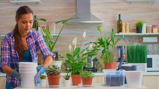 自宅のキッチンで花を植え替えるために植木鉢をテーブルに置く主婦。シャベルで肥沃な土壌をポット、白いセラミックポット、家庭菜園用に準備された植物に使用する