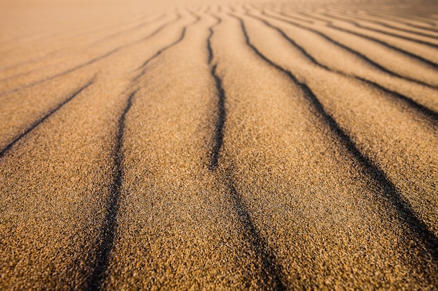 ペルーのhuacachina砂漠の砂丘