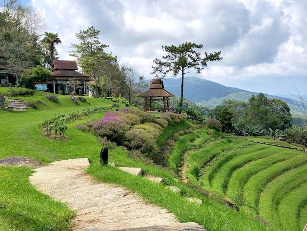 Huai nam dang national park, chiang mai, thailand