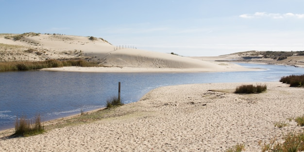 Течение huchet, настоящая пуповина между прудом леона и атлантическим океаном в ланде, франция