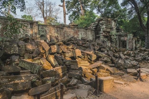 巨大なガジュマルの木古代アンコールワット遺跡パノラマサンライズアジア。バンテアイクデイ寺院。カンボジア、シェムリアップ
