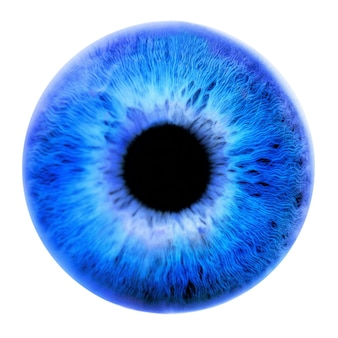 Huge blue pupil on a white background. front view