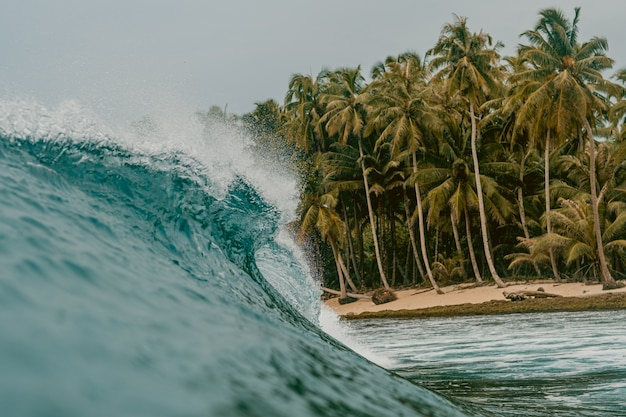 Huge breaking wave of a sea and the palm  trees in mentawai islands, indonesia