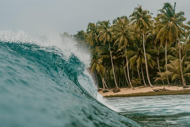 Enorme onda di rottura di un mare e le palme nelle isole mentawai, indonesia