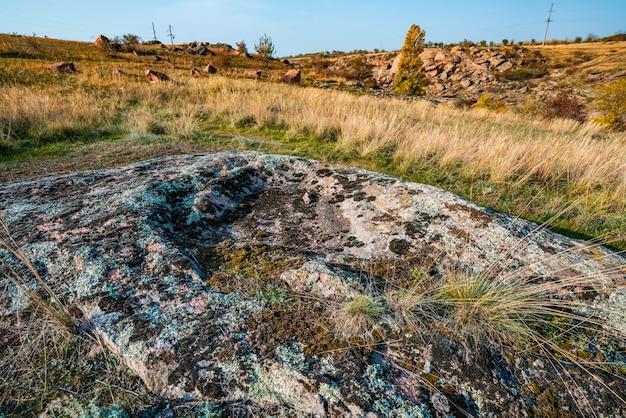 絵のように美しいウクライナとその美しい自然の暖かい太陽に満ちた牧草地の植生で覆われた古い石の鉱物の巨大な堆積物