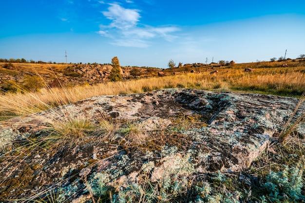 Огромные залежи старых каменных минералов, покрытых растительностью, на лугу, залитом теплым солнцем в живописной украине и ее прекрасной природе.