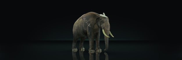 Огромный слон на темном фоне 3d рендеринг