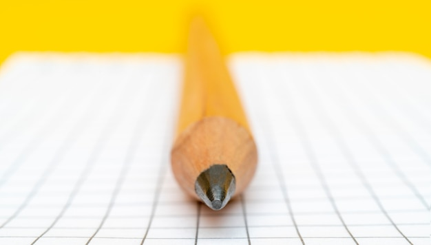 Huge pencil and checkered notepad page.