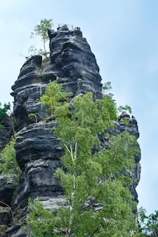 The huge rock towers in narodni park ceske svycarsko (czech republic).