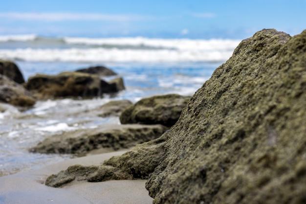 바다 근처에 완전히 덮인 이끼가 있는 거대한 돌은 선택적 초점으로 가장자리 보기를 닫습니다.