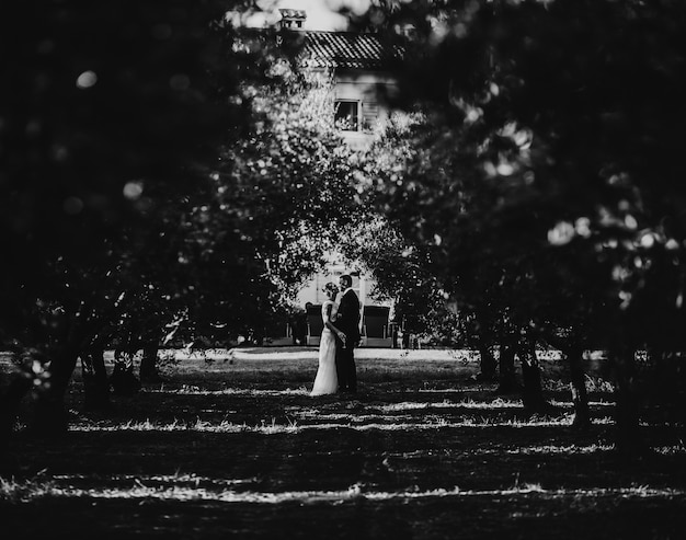 Hugging wedding couple stands on the path between fruit trees in the park