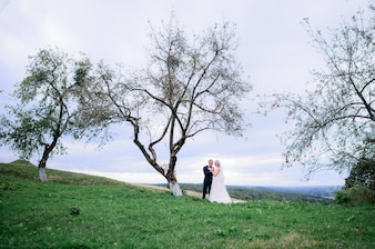 Hugging wedding couple stands under the old tree on the field