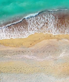 真上にある海上空中垂直ショットに沿った砂浜の人間と犬の足跡