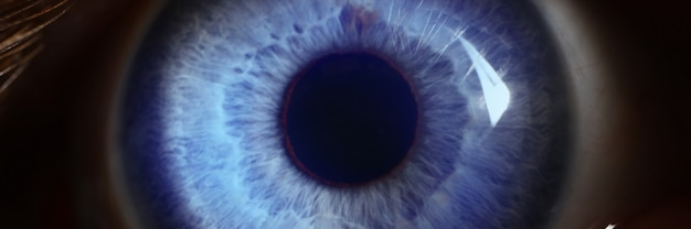 Human blue eye with light straight on it