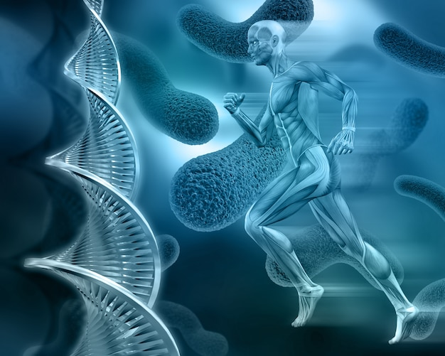 Человеческое тело с клетками в голубых тонах