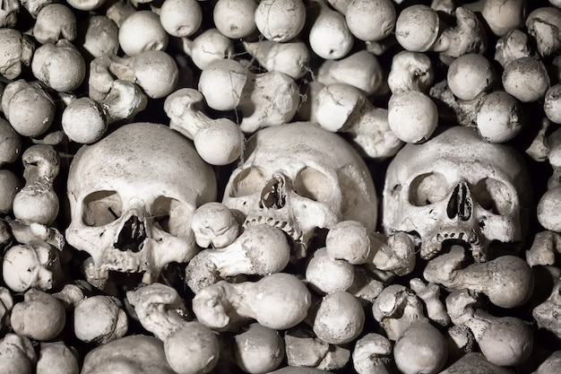 Human bones and skulls as a background