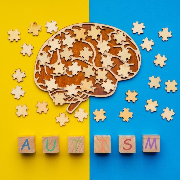 自閉症の概念のための人間の脳