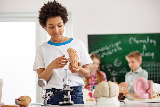 Человеческий мозг. умный мальчик держит модель мозга, изучая ее