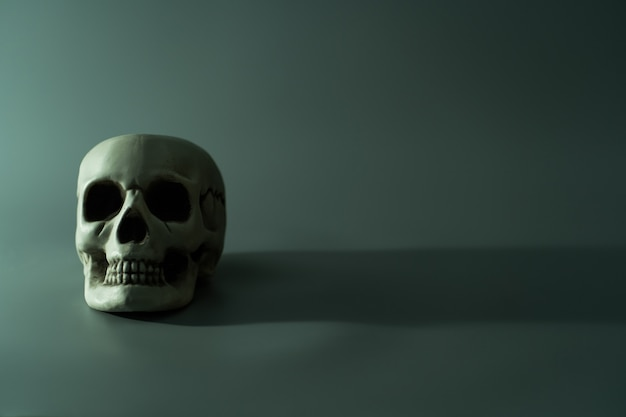 Human dead skull head. halloween party background