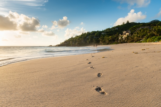 Human deep footprints at wet sandy coastline