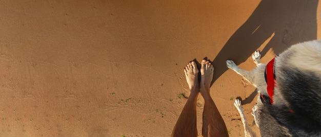 Human and dog foots at sandy beach
