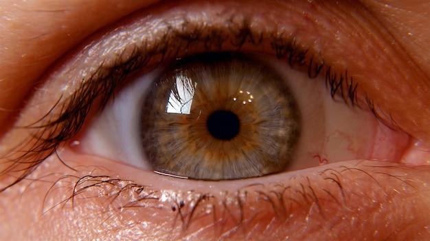 Human eye pupil macro shot