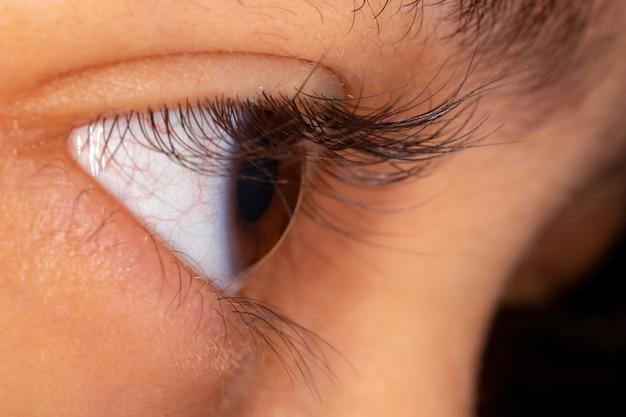 Human eye in side view