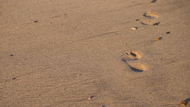 Следы человека на песчаном пляже