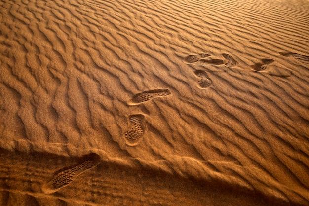 Human footprints and quad buggy wheel tracks at desert sand