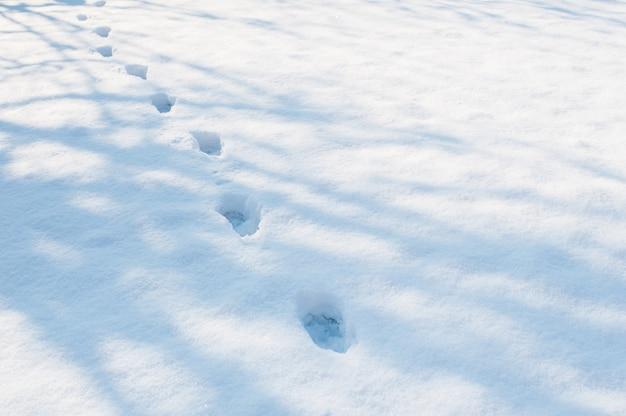 Human footprints in the snow. christmas