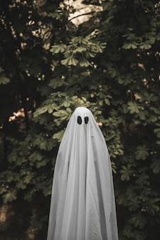 Human in ghost costume standing near bush