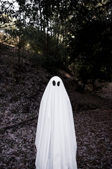 Human in ghost costume standing in park