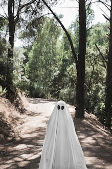 Human in ghost costume standing on path in forest