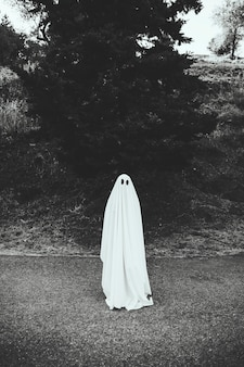 Human in ghost costume standing on road